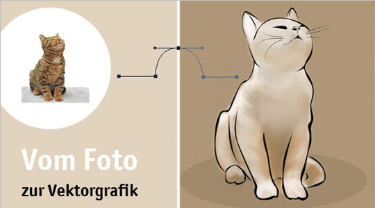 Foto vektorisieren